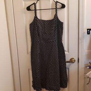 K & Company Polka Dot Dress Size 10